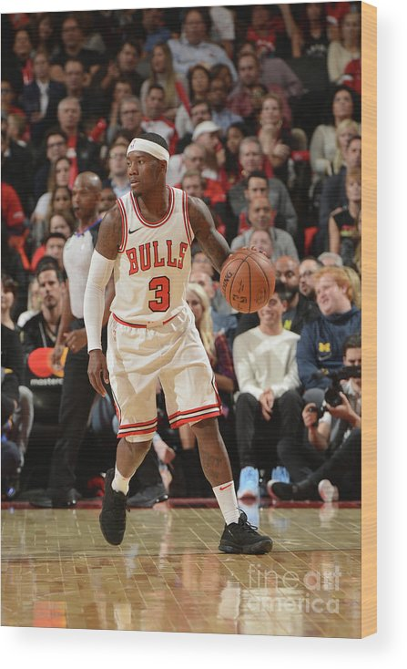 Nba Pro Basketball Wood Print featuring the photograph Chicago Bulls V Toronto Raptors by Ron Turenne