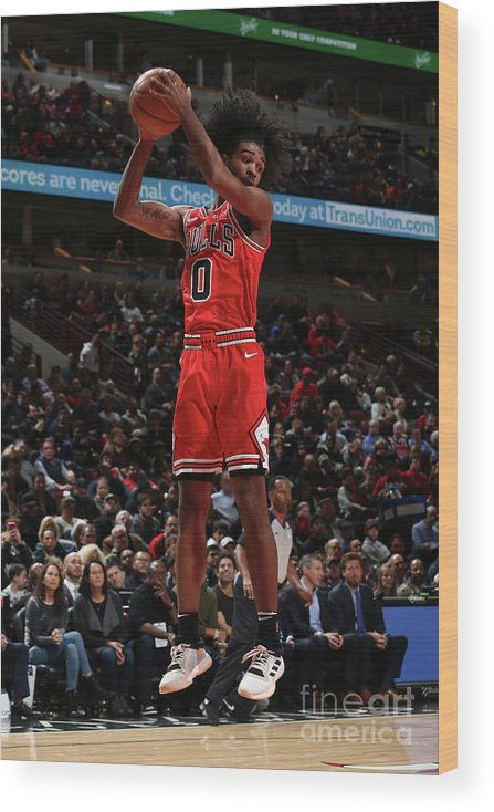 Coby White Wood Print featuring the photograph New York Knicks V Chicago Bulls by Gary Dineen