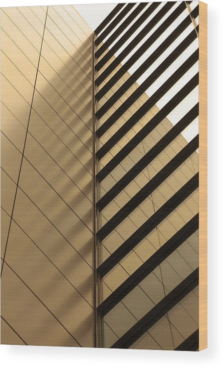 Architectural Feature Wood Print featuring the photograph Architecture Reflection by Tomasz Pietryszek