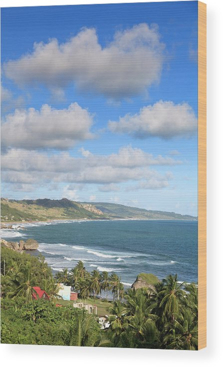 Scenics Wood Print featuring the photograph Bathsheba Bay, Barbados by Michele Falzone