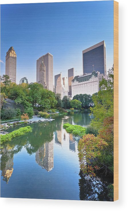 Downtown District Wood Print featuring the photograph Central Park In New York City by Pawel.gaul