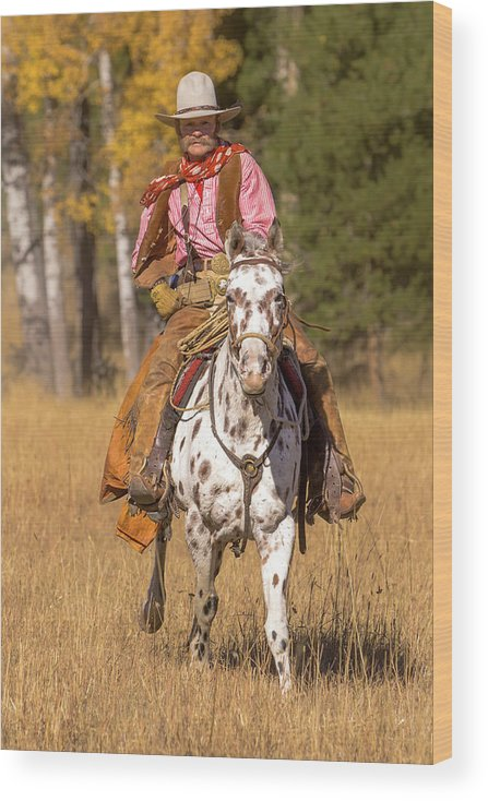 Action Wood Print featuring the photograph Cowboy No. 1 by Jerry Fornarotto