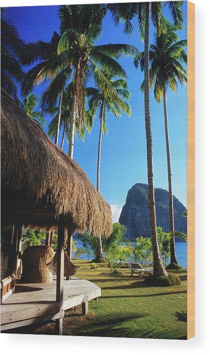 Tropical Tree Wood Print featuring the photograph Dolarog Beach Resort With Inabuyatan by Dallas Stribley