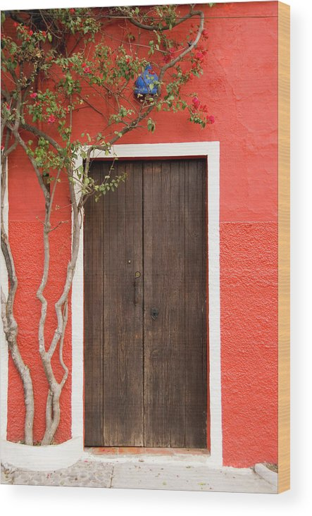 Built Structure Wood Print featuring the photograph Doorway by Livingimages