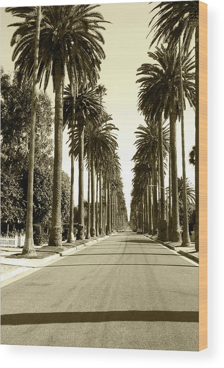 1950-1959 Wood Print featuring the photograph Grayscale Image Of Beverly Hills by Marcomarchi