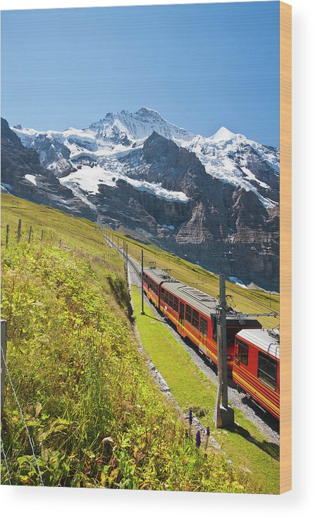 Scenics Wood Print featuring the photograph Jungfraubahn, Swiss Alps by Michaelutech