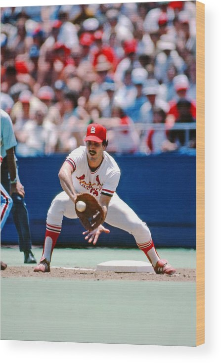 St. Louis Cardinals Wood Print featuring the photograph Keith Hernandez St. Louis Cardinals by St. Louis Cardinals, Llc