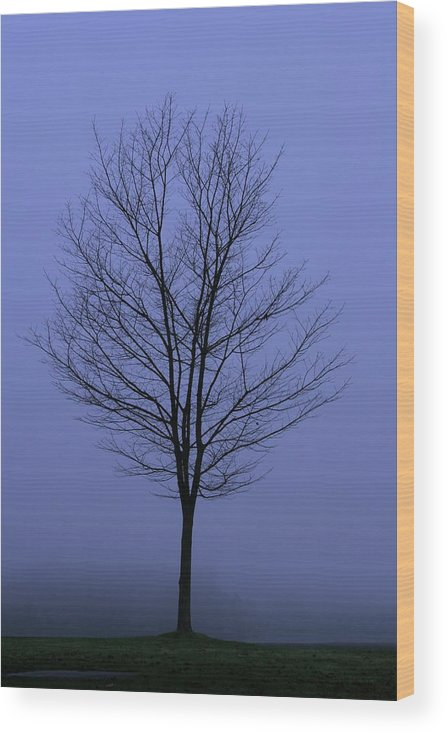 November Wood Print featuring the photograph Moody Blue November Day by Zennie