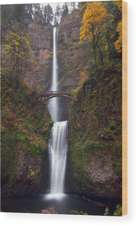 Scenics Wood Print featuring the photograph Multnomah Falls by Ted Ducker Photography