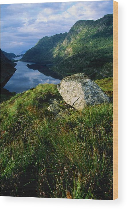 Scenics Wood Print featuring the photograph Norway, Maloy, Nordfjord, Alpine Tundra by Paul Souders