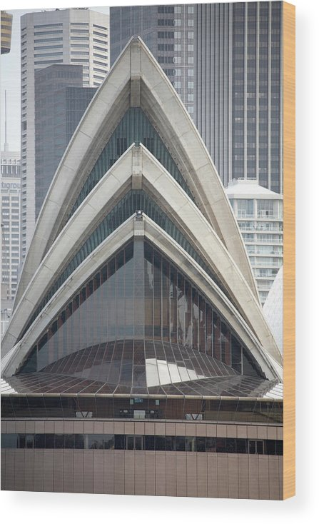 Built Structure Wood Print featuring the photograph Sydney Opera House by Andrew Holt