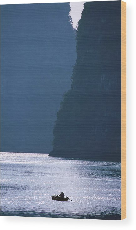 Tranquility Wood Print featuring the photograph Woman Navigates Among Magnificent by Stu Smucker