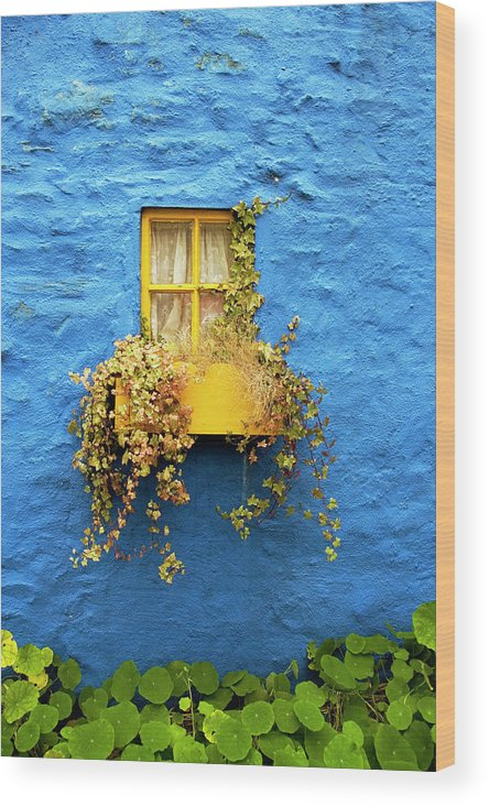 Outdoors Wood Print featuring the photograph Yellow Window On Bright Blue Wall & by Sarah Franklin Www.eyeshoot.co.uk