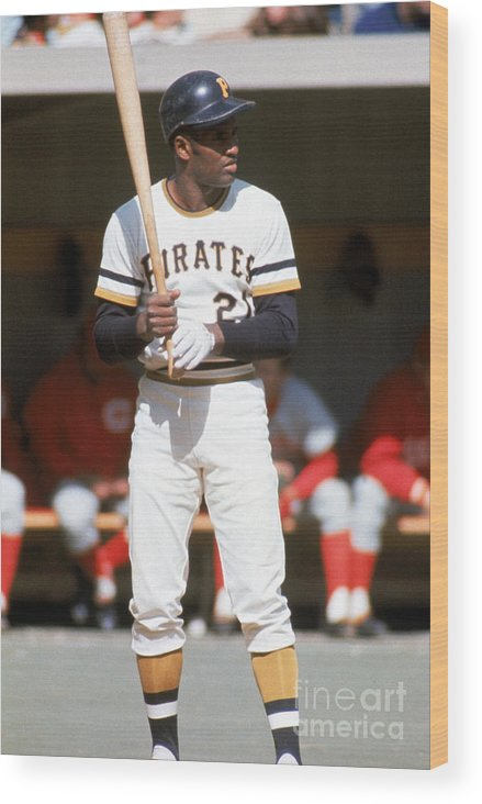 Sports Bat Wood Print featuring the photograph Roberto Clemente by Mlb Photos
