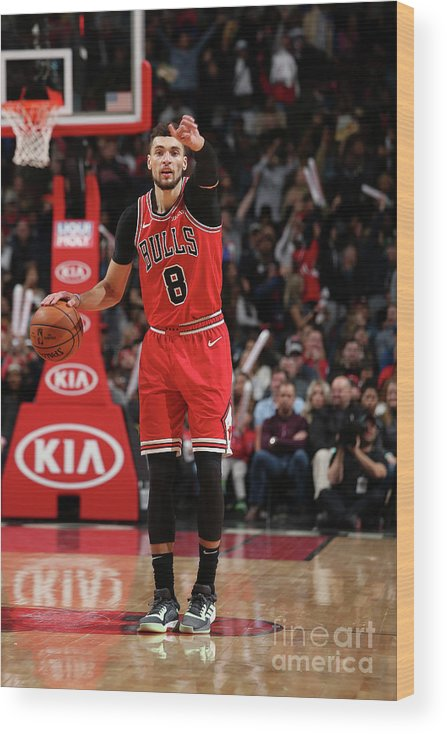Chicago Bulls Wood Print featuring the photograph Zach Lavine by Gary Dineen