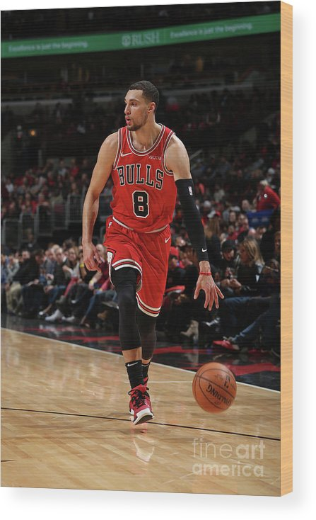 Nba Pro Basketball Wood Print featuring the photograph Zach Lavine by Gary Dineen