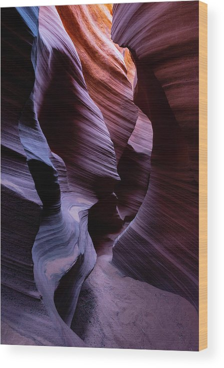 Alluring Wood Print featuring the photograph Alluring by Chad Dutson