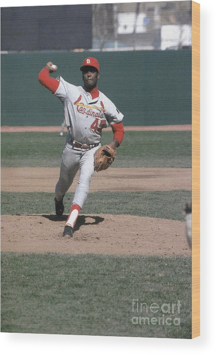St. Louis Cardinals Wood Print featuring the photograph Bob Hall by Louis Requena