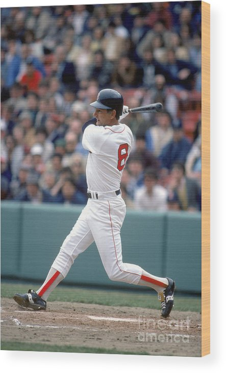 1980-1989 Wood Print featuring the photograph Carl Yastrzemski by Rich Pilling