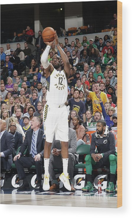 Nba Pro Basketball Wood Print featuring the photograph Damien Wilkins by Nba Photos