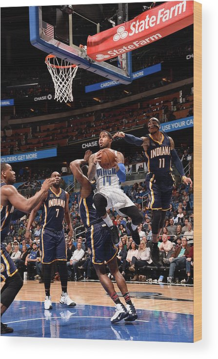 Nba Pro Basketball Wood Print featuring the photograph D.j. Augustin by Gary Bassing