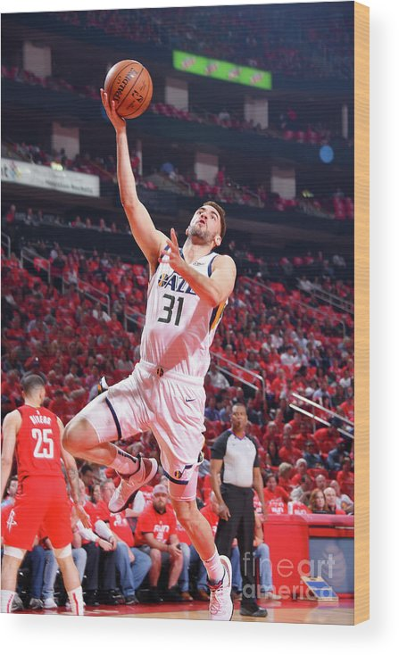 Playoffs Wood Print featuring the photograph Georges Niang by Bill Baptist