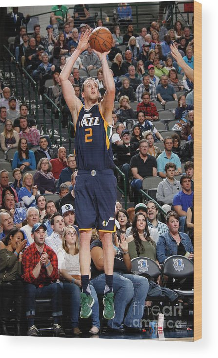 Nba Pro Basketball Wood Print featuring the photograph Joe Ingles by Danny Bollinger