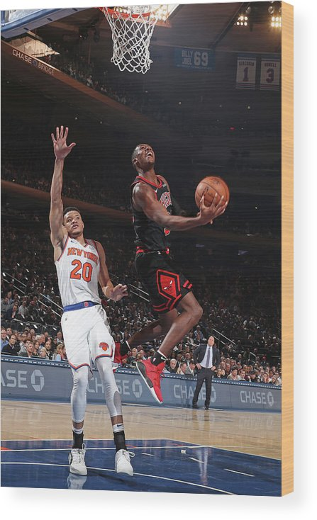 Chicago Bulls Wood Print featuring the photograph Kris Dunn by Nathaniel S. Butler