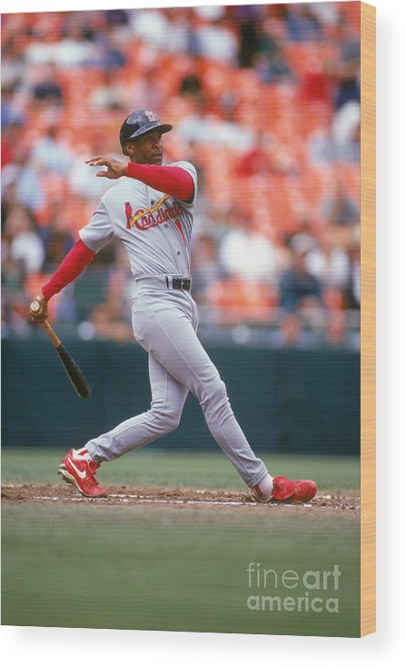 St. Louis Cardinals Wood Print featuring the photograph Ozzie Smith by Don Smith
