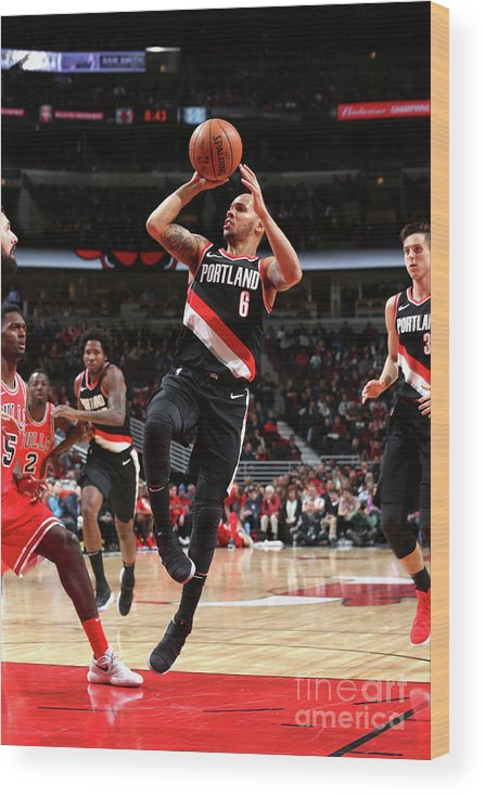 Nba Pro Basketball Wood Print featuring the photograph Shabazz Napier by Gary Dineen