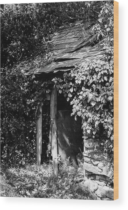 Black And White Wood Print featuring the photograph Shed - Retired by Bear R Humphreys