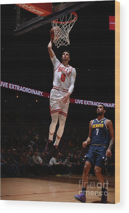 Chicago Bulls Wood Print featuring the photograph Zach Lavine by Bart Young