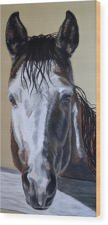 Paint Horse Wood Print featuring the pastel Neighbors over the Fence by Ann Marie Chaffin