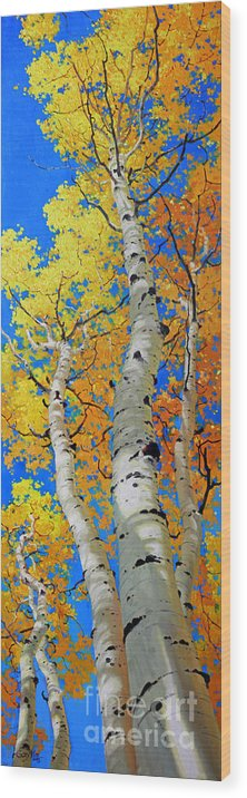 Fall Aspen Wood Print featuring the painting Tall Aspen Trees by Gary Kim