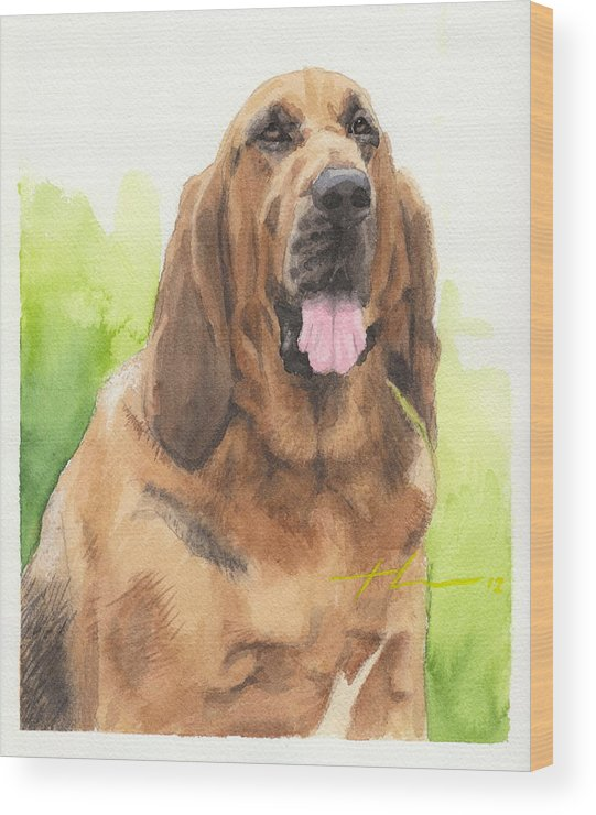 <a Href=http://miketheuer.com Target =_blank>www.miketheuer.com</a> Hound Dog Watercolor Portrait Wood Print featuring the drawing Hound Dog Watercolor Portrait by Mike Theuer
