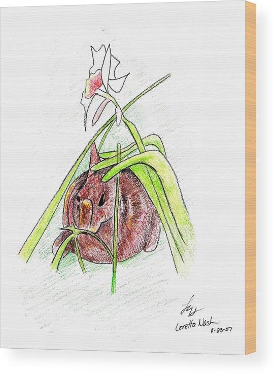 Rabbit Wood Print featuring the drawing Rabbit by Loretta Nash
