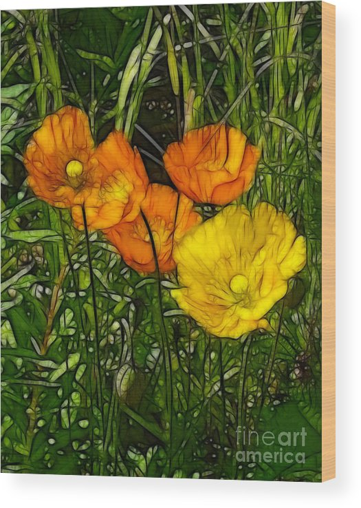 Floral Wood Print featuring the painting See Fou's Poppies by Francine Dufour Jones