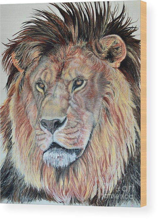 African Lion Wood Print featuring the pastel The Sentinel by Ann Marie Chaffin