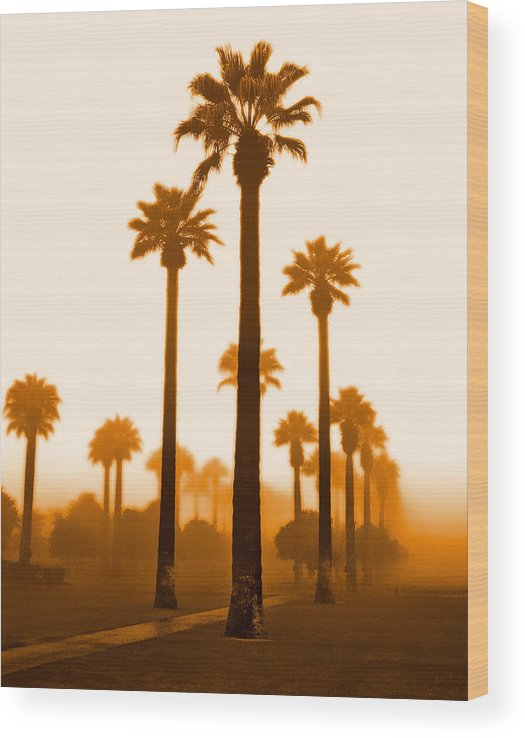 Wood Print featuring the photograph Foggy Sunrise by Jim Painter