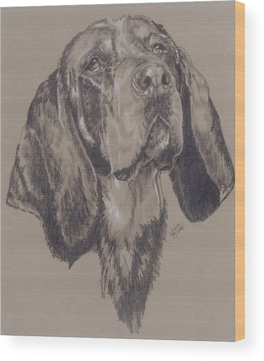 Purebred Wood Print featuring the drawing Bluetick Coonhound in Graphite by Barbara Keith