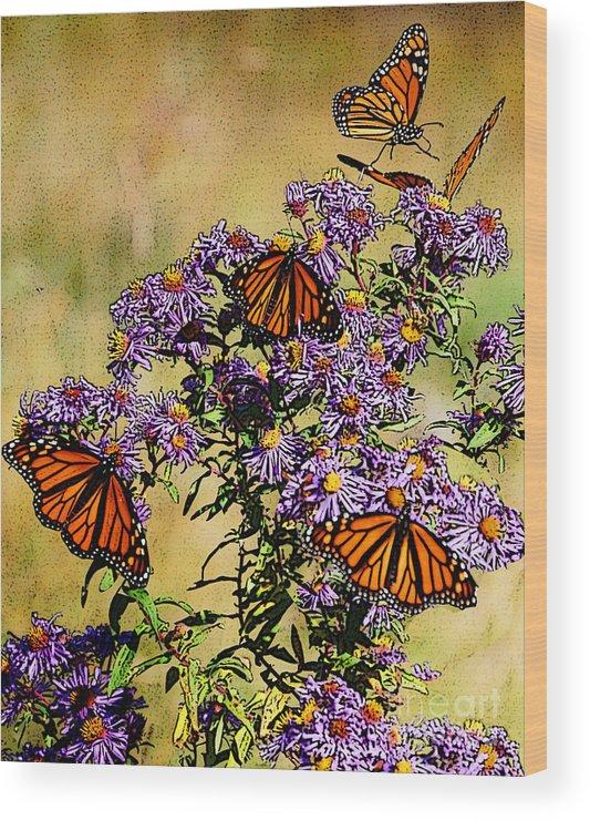 Diane Berry Wood Print featuring the drawing Butterfly Party by Diane E Berry