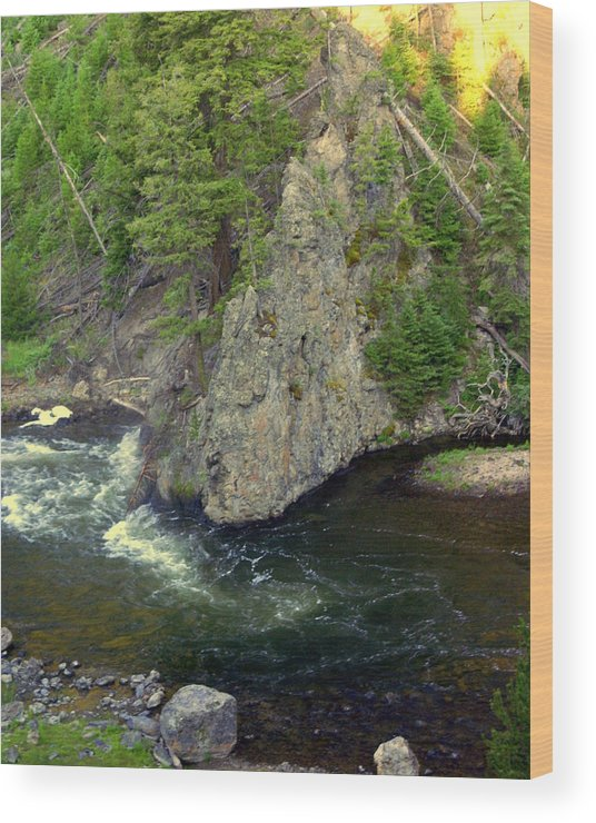 Firehole River Wood Print featuring the photograph Fin on the Firehole by Marty Koch