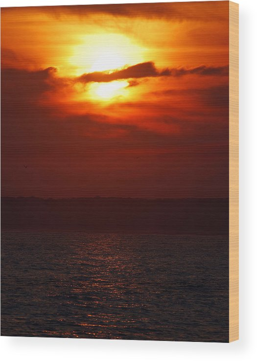 Sunset Wood Print featuring the photograph Fire in the Sky by Mark Wiley