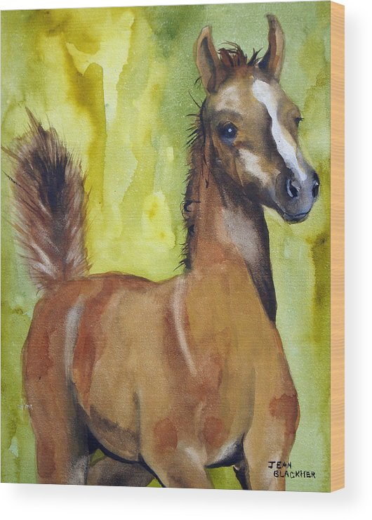 Filly Wood Print featuring the painting Saucy by Jean Blackmer