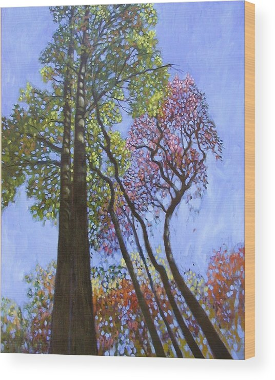 Fall Trees Highlighted By The Sun Wood Print featuring the painting Sunlight On Upper Branches by John Lautermilch