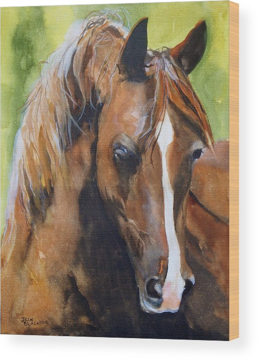 Horse Wood Print featuring the painting White Blaze by Jean Blackmer
