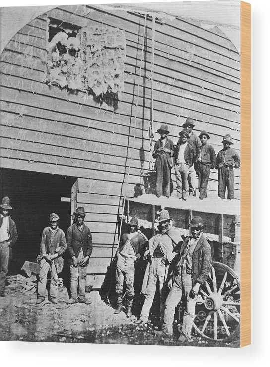 Working Wood Print featuring the photograph Black Men At Cotton Barn by Bettmann