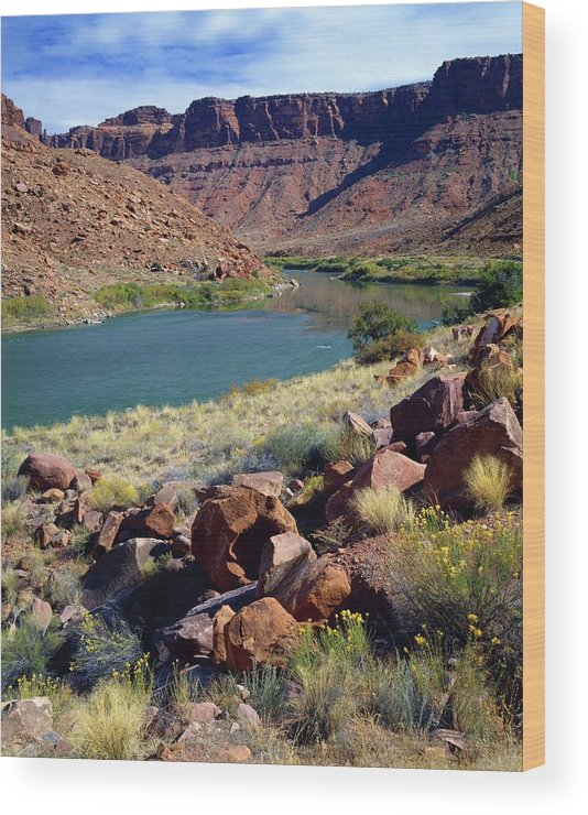 Scenics Wood Print featuring the photograph Colorado River by Design Pics/david L. Brown