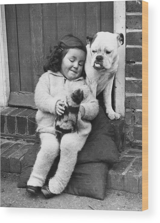 Pets Wood Print featuring the photograph Girls Best Friend by Fox Photos