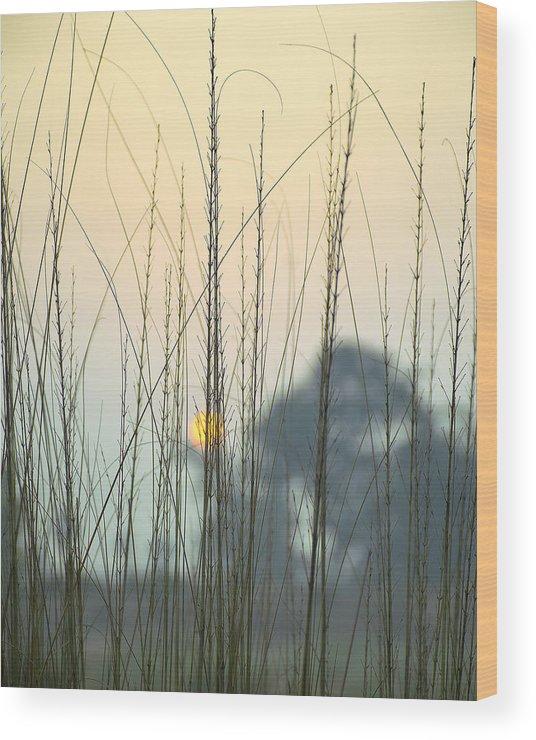 Landscape Wood Print featuring the photograph morning Star by Ravi Bhardwaj